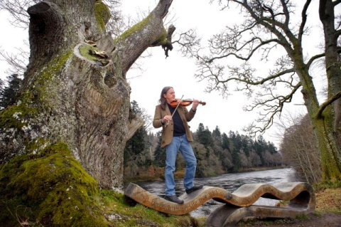 Internationally renowned singer-songwriter and composer Dougie MacLean and the Woodland Trust are urging Scots from around the world to vote for the nation's entry to a European tree contest.