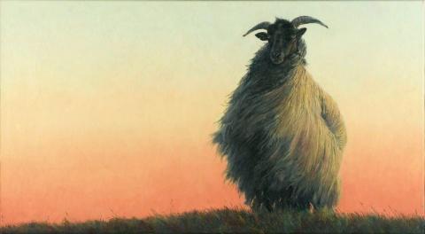 081710_robin-shillcock