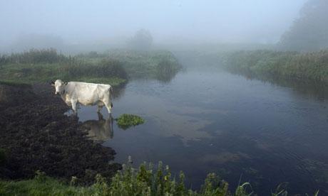 River-Waveney-Suffolk-007