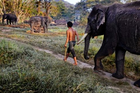 THAILAND-10075