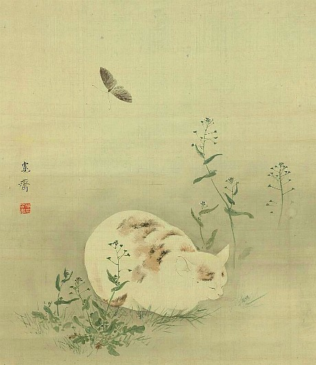 cat and butterfly 19th c Mori Kansai  japanese