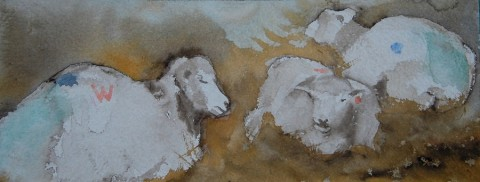 ewes in the lambing shed with twins water colour(1)