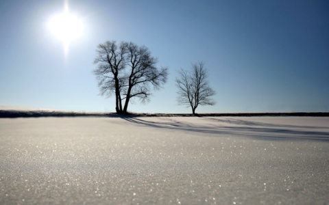 landscapes winter snow sun trees sunlight blue sky 1920x1200 wallpaper_wallpaperswa.com_82