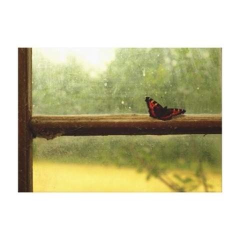 a_butterfly_alights_on_a_wooden_window_sill_canvas-r4d1cfd16f9fe474386f9c7224a07fe95_a99jn_8byvr_512