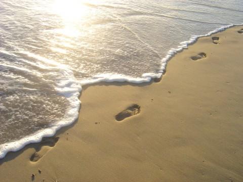 footprints-man-beach-morning-31000