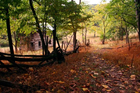 fallen-leaves-path-old-farm-house