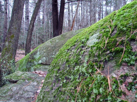 big-mossy-rocks