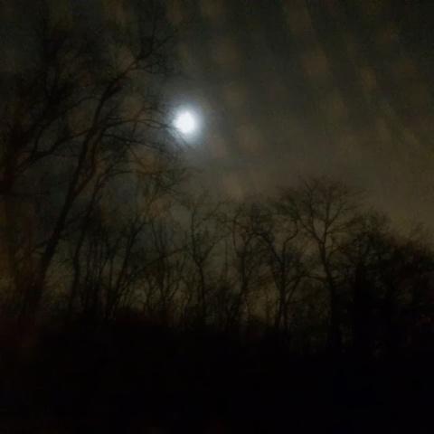 full.moon