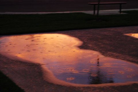 sunset_puddle_by_wordpainter81