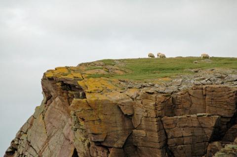 cliff-top-20.jpeg