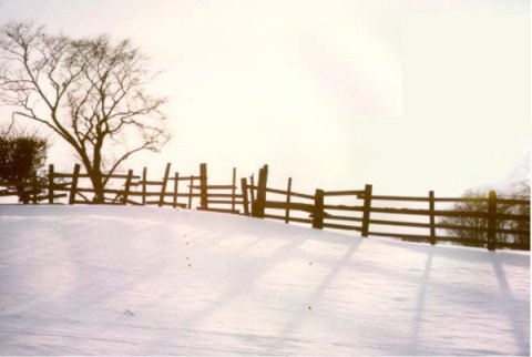 snow_on_fields