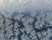 snowflakes-windowpane-early-winter-dawn-frozen-close-up-47251797