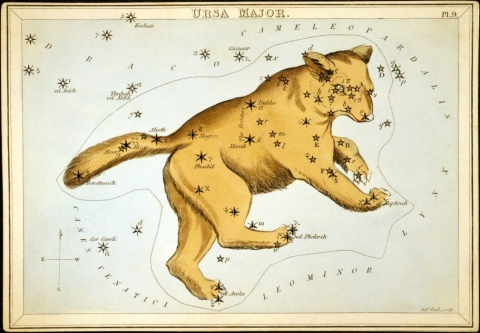 Ursa-Major-illustration.jpg