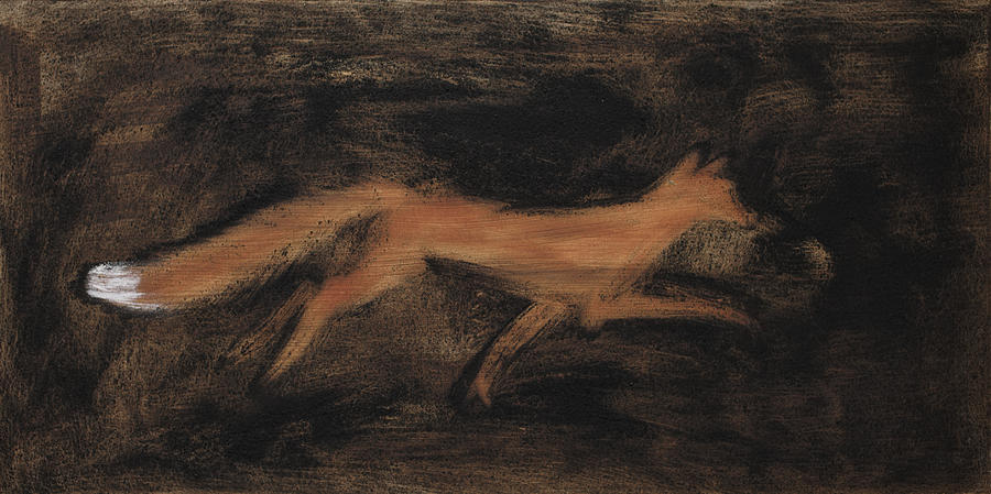 fox-in-the-night-sophy-white