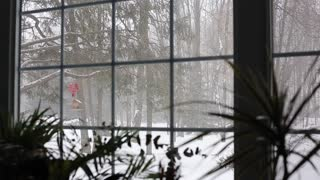 snow_falling_in_forest_view_through_living_room_window_with_plants_in_foreg_hkgebgs-fe_thumbnail-small01