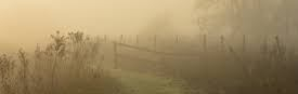 index ground fog